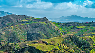 Sicily - Green island in the Mediterranean